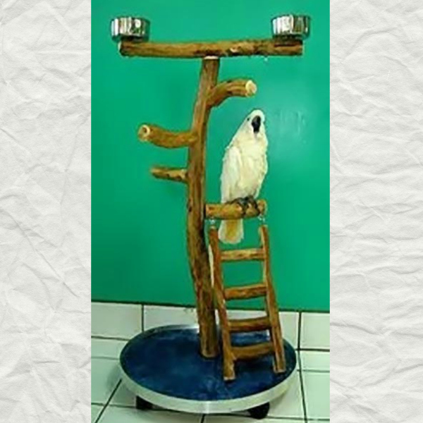 Dragonwood Large Rolling Play Stand w Ladder 19x23