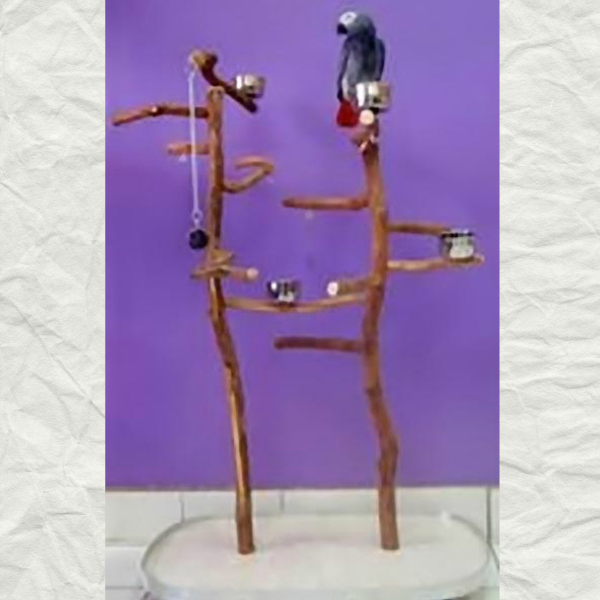 Dragonwood Double Upright Parrot Play Stand Model 2132 21x34x51