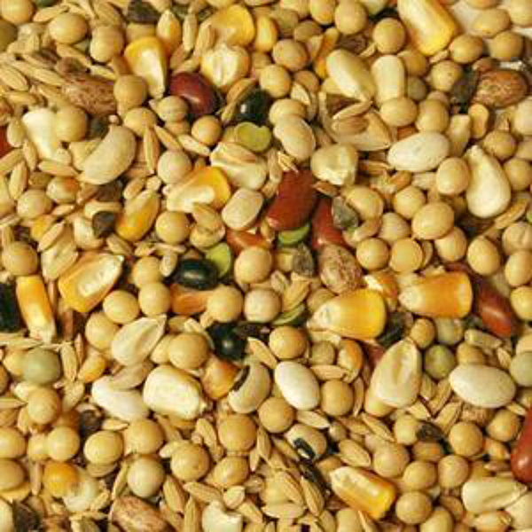 Volkman Featherglow Fancy Soak Simmer Bean Mixture 20 Lb (9.07 Kg)