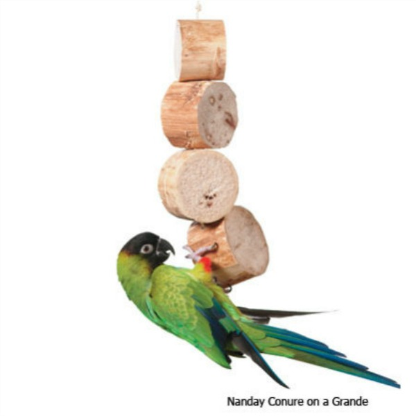 Wesco Bird Kabob Foraging Toy- Grande