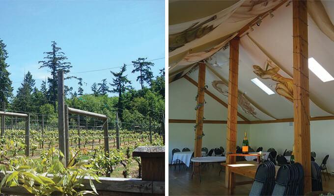 muse-vineyards-680