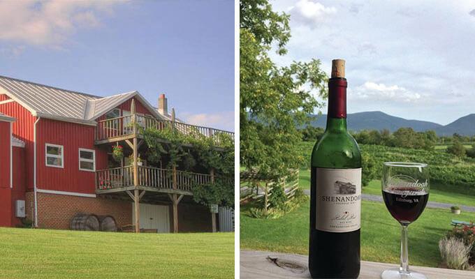 shenandoah-vineyards-680