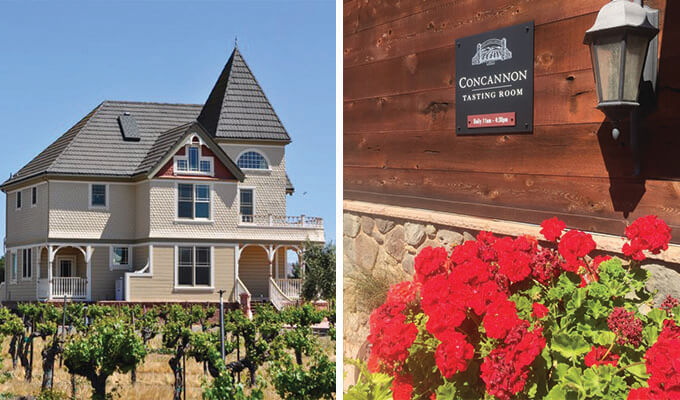 concannon-vineyard-680