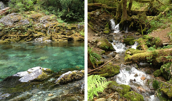 opal-creek-680