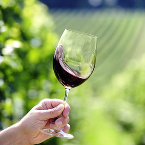 red-wine-glass-washington-region