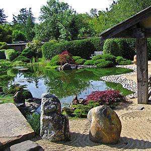 Osmosis Zen Garden