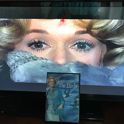 Alfred Hitchcock's The Birds DVD