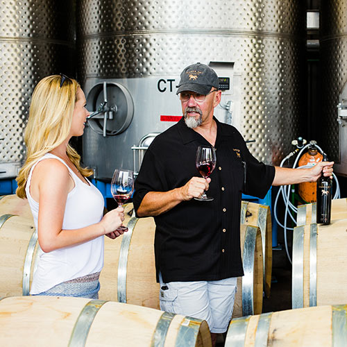 insider wine tasting tour at Tamber Bey Vineyards