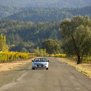 Designated Drivers Napa & Sonoma