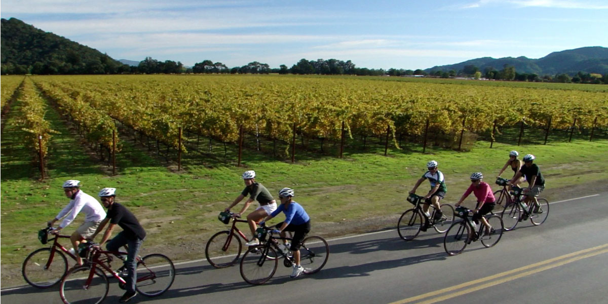 Napa Valley Winery Bicycle Tour