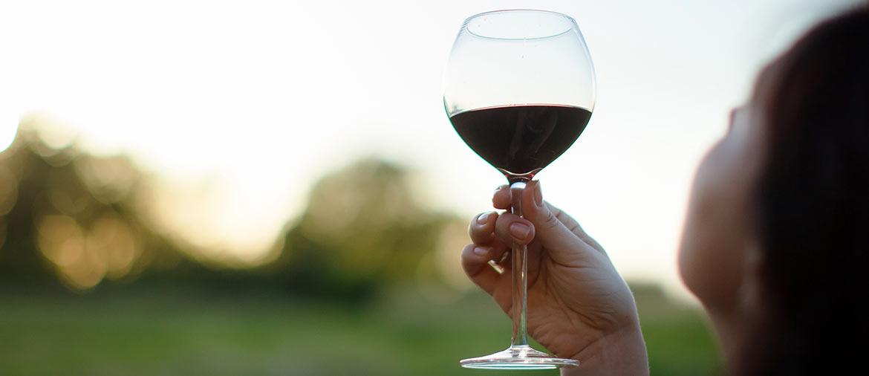 oakville-wineries-1170x506