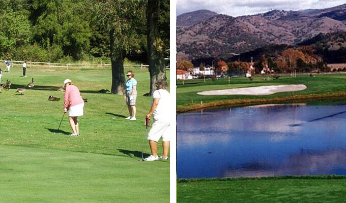 vintners-golf-club