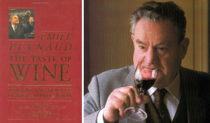 the-taste-of-wine