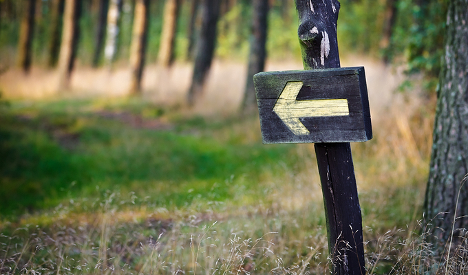 While Hiking In Napa Valley But Straying From Marked Trails Can Lead You Onto Private Property Or Jeopardize Your Safety Stay On Official Park