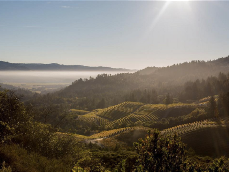 Best Views In Calistoga Napavalley Com