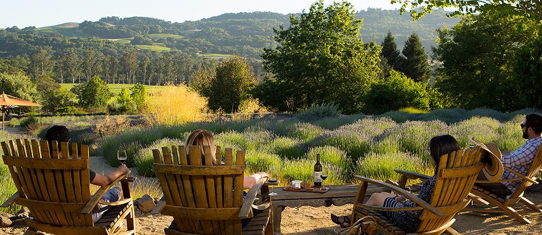 Best Napa Valley Wine Tasting Tours
