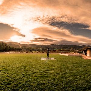 Summer Solstice Yoga At Robert Mondavi Winery