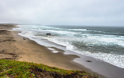 Featured Things To Do Sonoma Coast Discover the beauty
