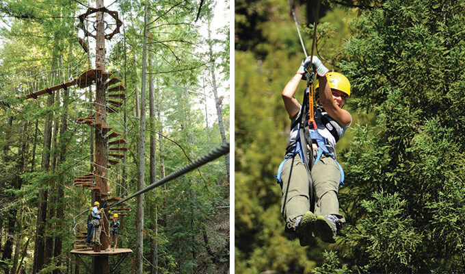 sonoma-canopy-tours-680
