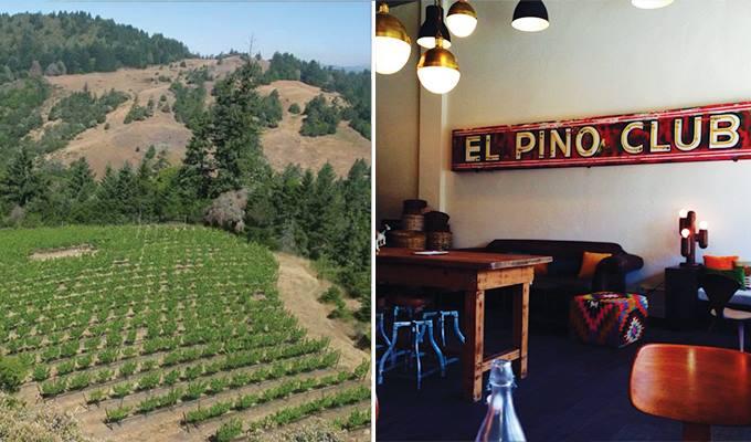 banshee wine tasting room the 15 best wine tasting rooms in sonoma