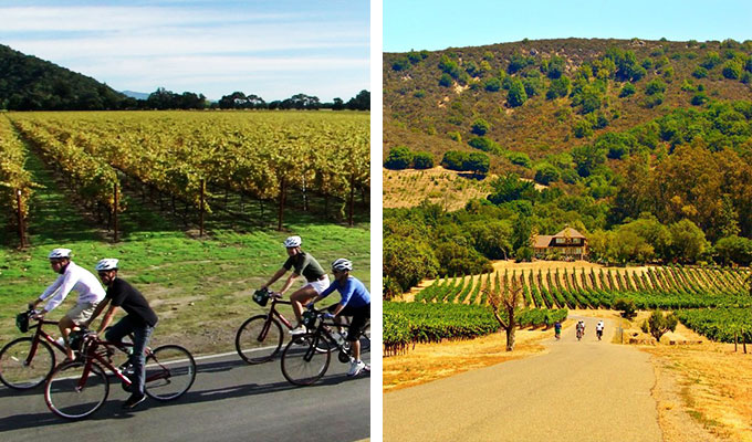 Sonoma-Valley-Bike-Tours