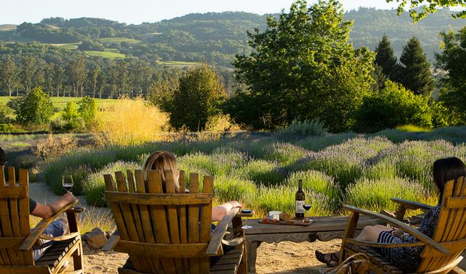 Matazanas Creek Winery
