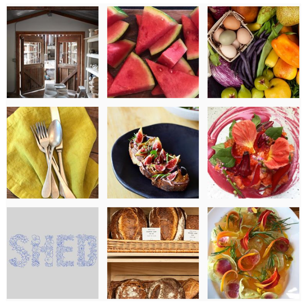 Healdsburg Shed instagram feed