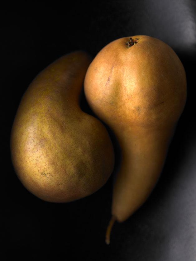 pears6--copy_629.jpg