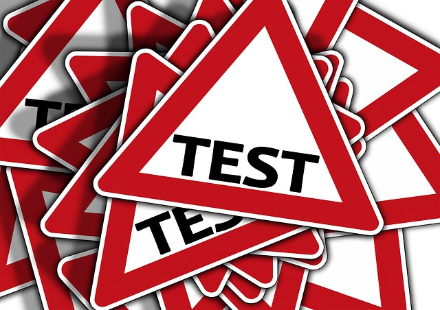 What is a psychometric test
