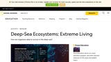 Deep Sea Ecosystems: Extreme Living