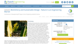 Biomimicry and Sustainable Design - Nature Is an Engineering Marvel