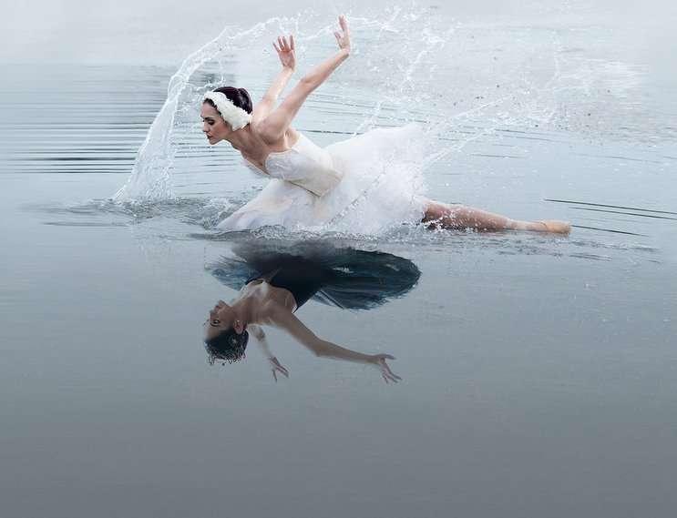 Image: Swan Lake, orlandoballet.org