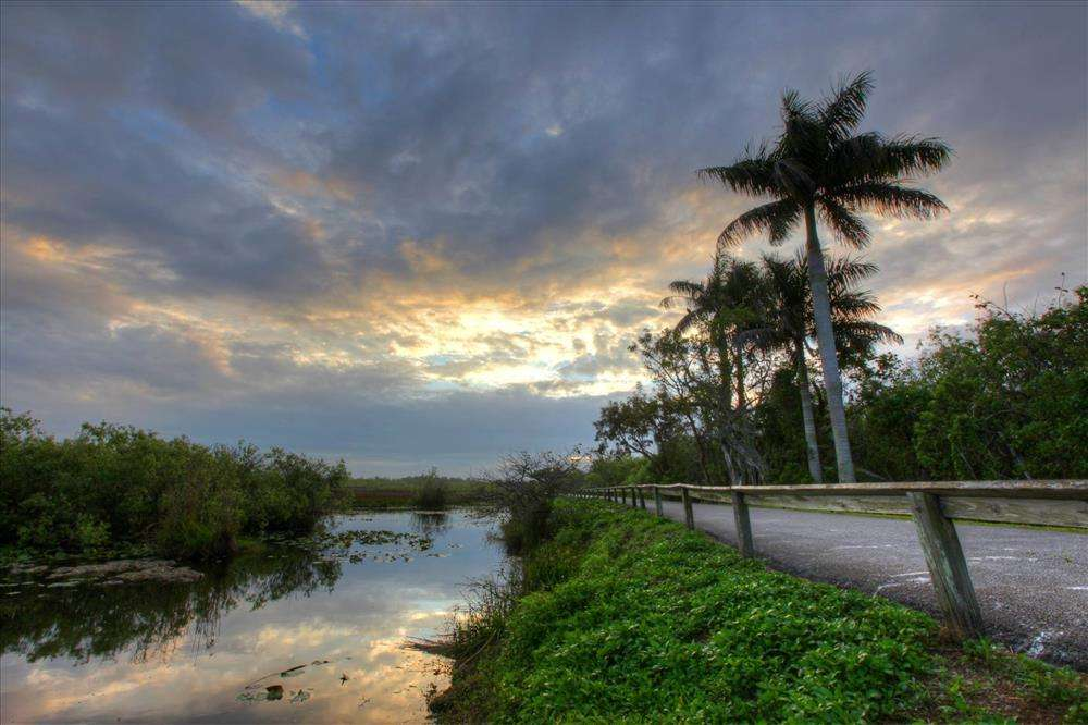 Scenic drive, Everglades National Park, 2015. Courtesy of U.S. National Park Service