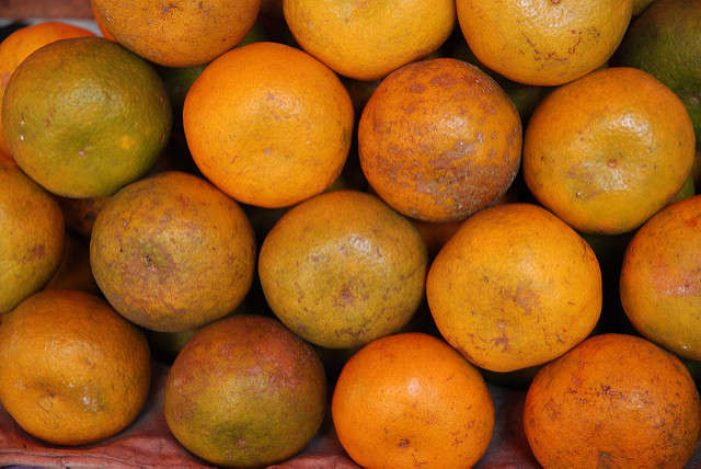 Orange growers will be reimbursed for damaged fields, lost profits, and crop insurance premiums. Photo: Flickr Creative Commons