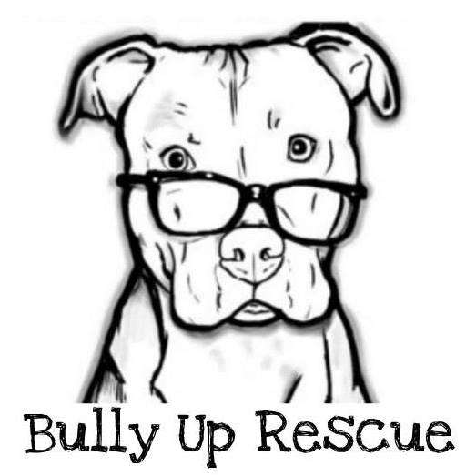 Image: Bully Up Rescue logo, Bully Up Rescue Facebook page.