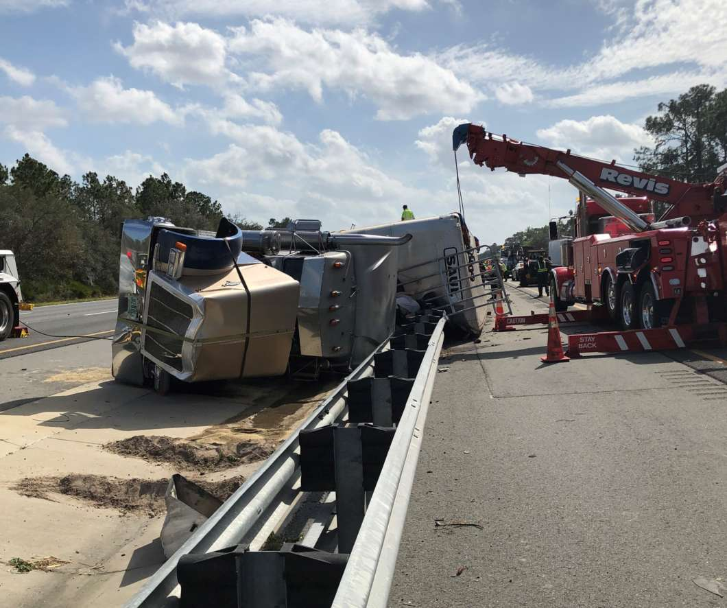 The driver of a semi hauling cows was not injured when the truck crashed on Interstate 75 Thursday morning, but 19 cows were killed. Photo: FHP