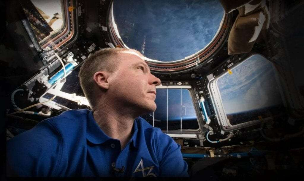 Terry Virts looks down on Earth from the International Space Station cupola. Photo: NASA