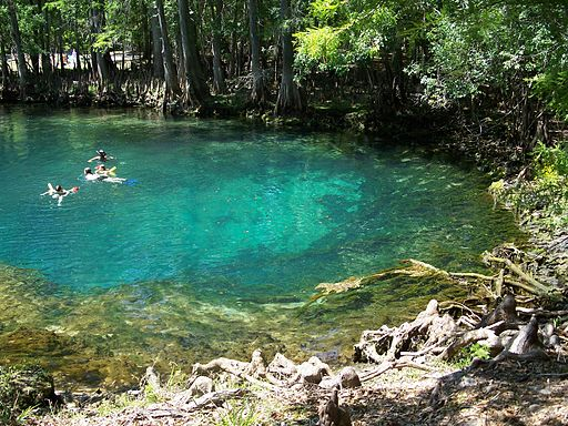 Manatee Springs State Park Florida springs041 In: Water activist opposes Nestlé's plan to bottle 1 million gallons a day from Florida springs | Our Santa Fe River, Inc. | Protecting the Santa Fe River in North Florida