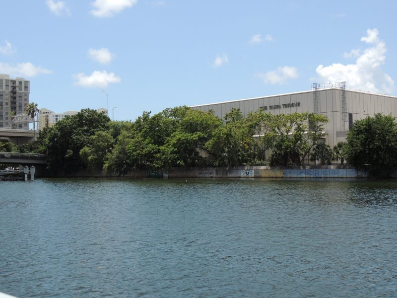 Bird roosting habitat Tampa