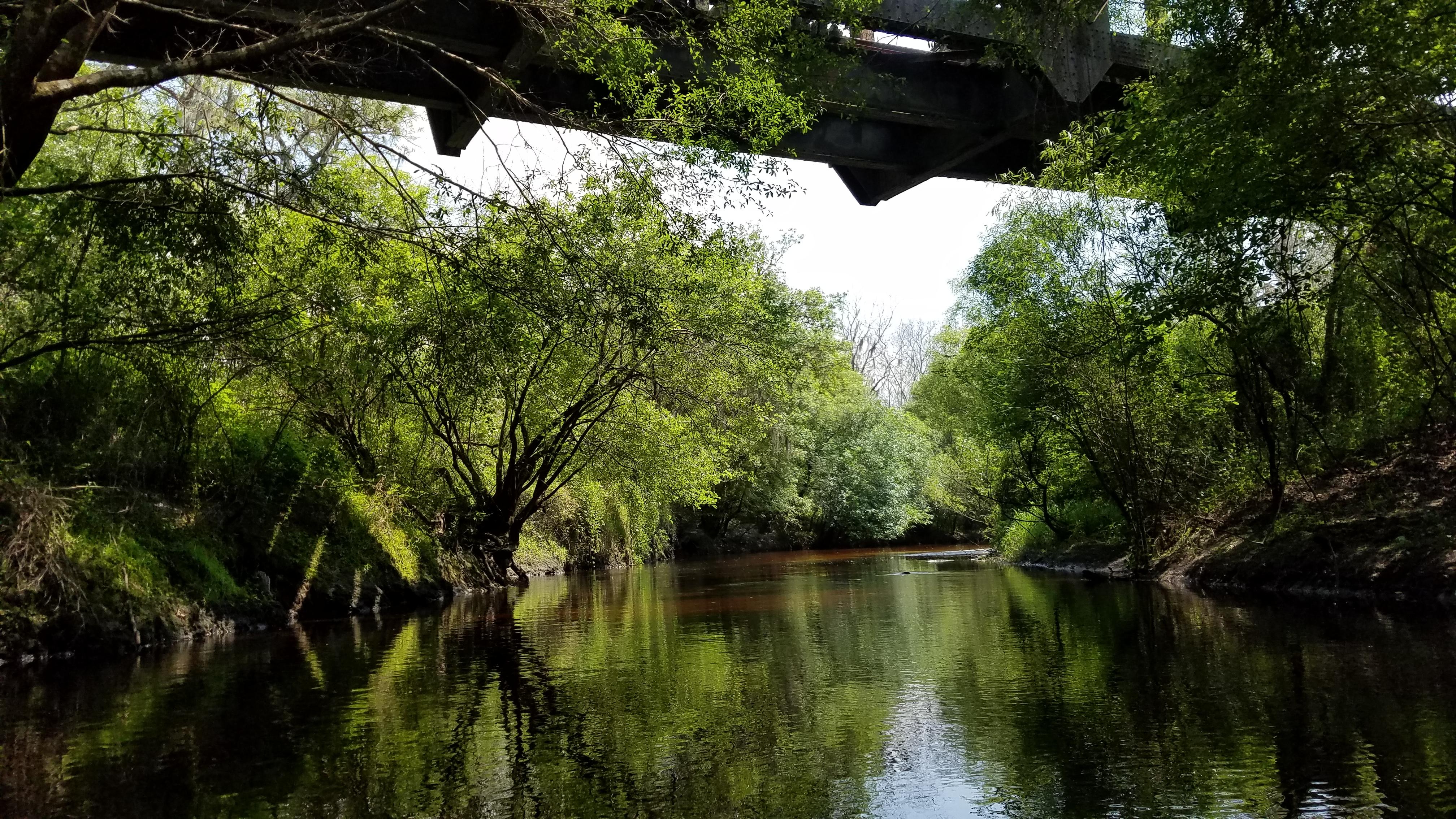 Little Manatee River near Waimauma. By Seán Kinane (Apr. 2016).