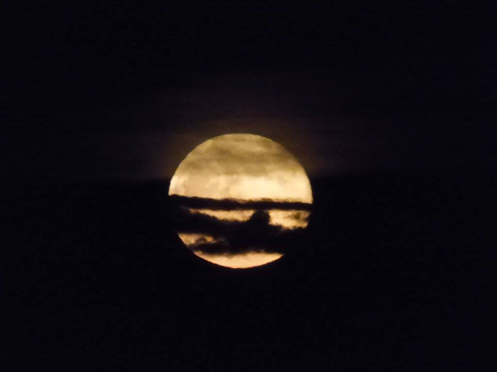 Wmnf Blue Moon Supermoon Total Lunar Eclipse Wednesday Morning