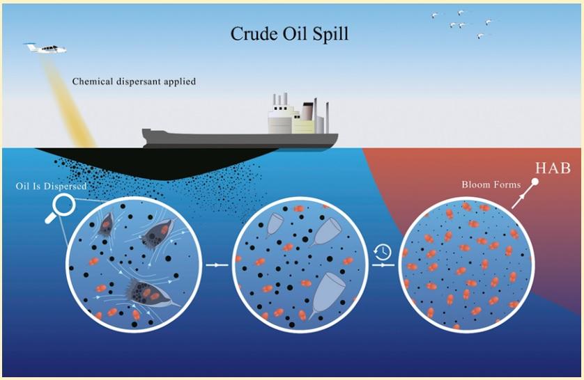 red tide oil spill