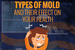 Types of Mold and Their Effect on Your Health [infographic]