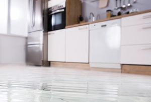 What Does the Water Damage Mitigation Process Look Like?