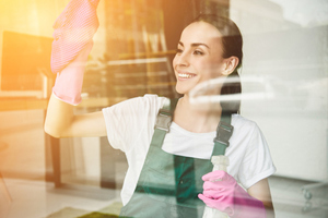 5 Tips to Keep Your Windows Clean