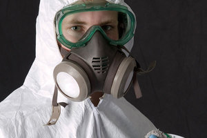 Why Mold Removal is a Job for the Pros