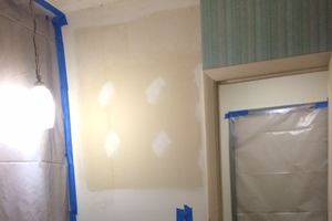 Mold Removal, Columbia, SC