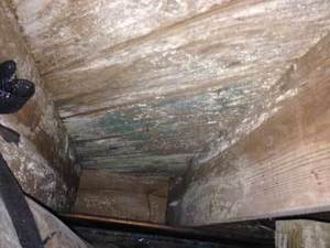 Crawl Space Mold Removal, Irmo, SC