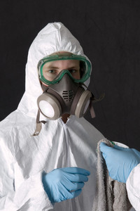 Mold Remediation: DIY or Hire a Pro?