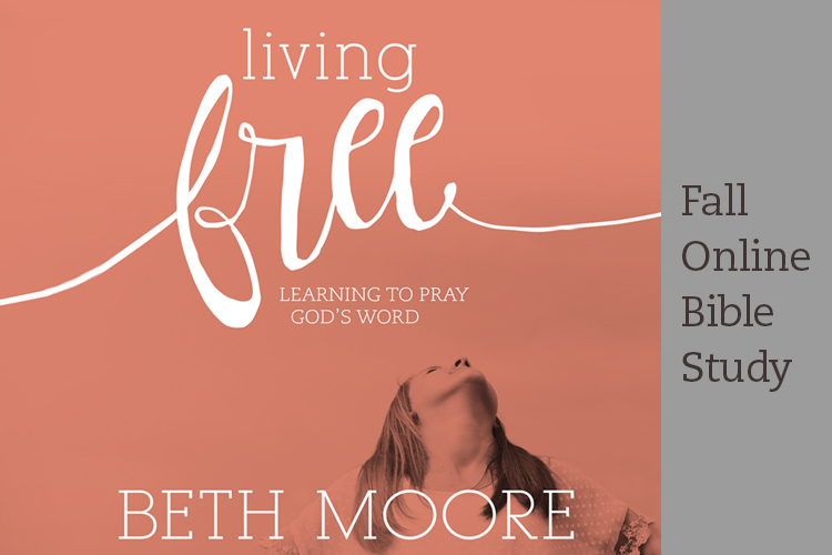 Living Free Online Bible Study Session 1 - LifeWay Women All